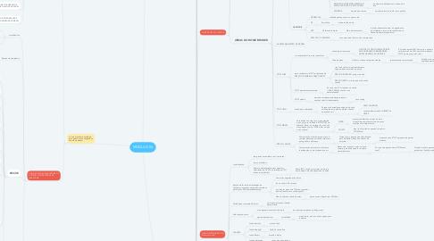 Mind Map: MÓDULO 04
