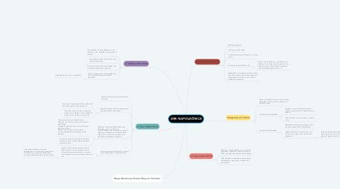 Mind Map: ERA NAPOLEÔNICA