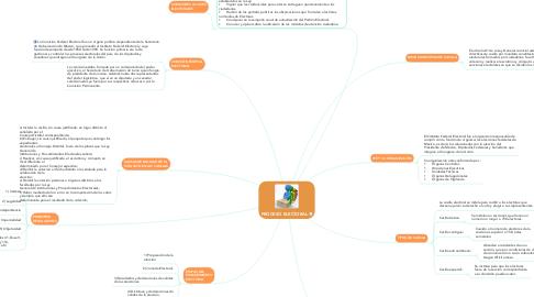 Mind Map: PROCESO ELECTORAL