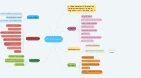 Mind Map: Control Interno