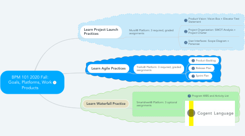 Mind Map: BPM 101 2020 Fall: Goals, Platforms, Work Products