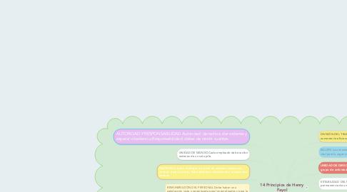 Mind Map: 14 Principios de Henry Fayol