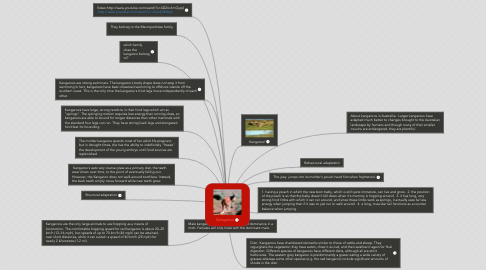 Mind Map: Kangaroo