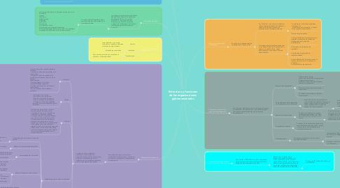 Mind Map: Estructura y funciones de las organizaciones gubernamentales