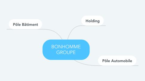 Mind Map: BONHOMME GROUPE