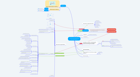 Mind Map: Anatomy and Physiology Form and function