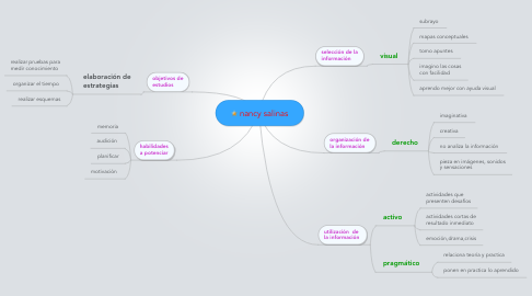 Mind Map: nancy salinas