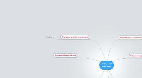 Mind Map: Анатомия человека