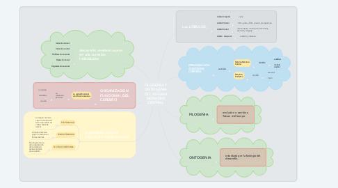 Mind Map: FILOGENIA Y ONTOGENIA DEL SISTEMA NERVIOSO CENTRAL