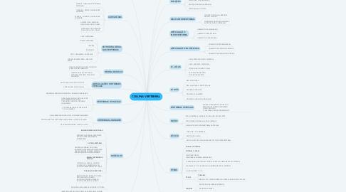 Mind Map: COLUNA VERTEBRAL