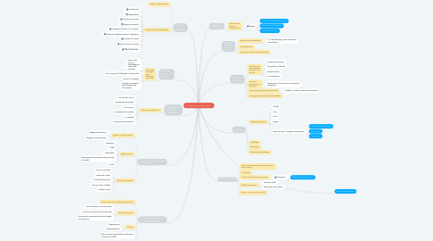 Mind Map: Guide pas à pas à l'Exportation