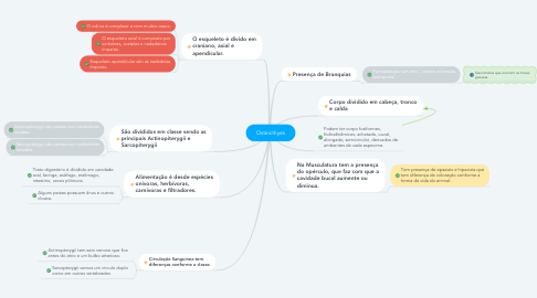 Mind Map: Osteicthyes