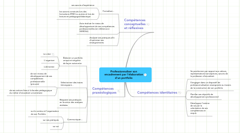 Mind Map: Professionnaliser son
