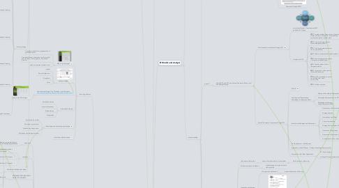 Mind Map: MITE 6330 individual mind map -- SHEN YING