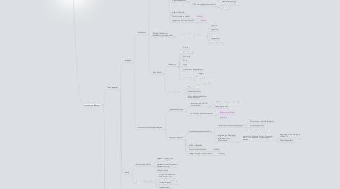 Mind Map: WTC Datenmanagement