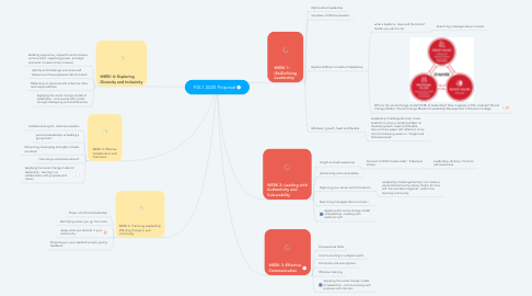 Mind Map: P2L1 2020 Proposal
