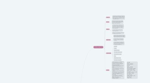 Mind Map: SISTEMAS DE REGISTRO DE INVENTARIOS
