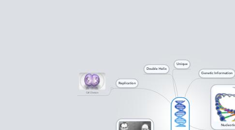 Mind Map: DNA
