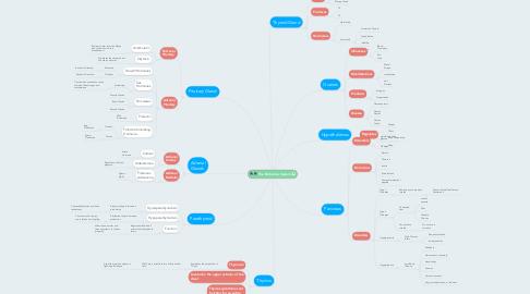 Mind Map: The Endocrine System