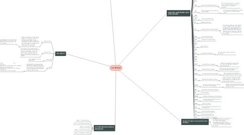 Mind Map: LA VEILLE