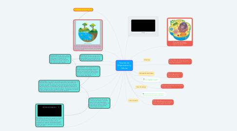 Mind Map: Niveles de Organización y Células