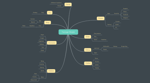 Mind Map: Teenage lifestyle