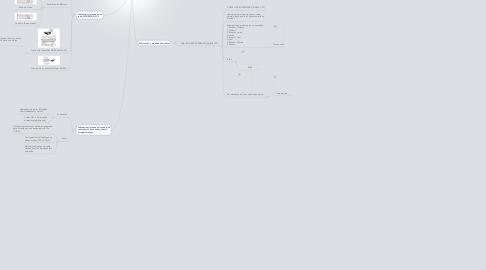 Mind Map: Copy of Especificacines y Terminaciones del Cable