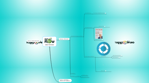 Mind Map: WHAT THE FLOW