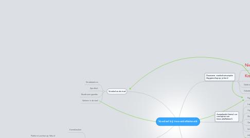 Mind Map: Voedsel bij InnovatieNetwerk