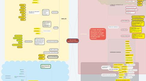 Mind Map: PROCESSOS ORGANIZACIONAIS