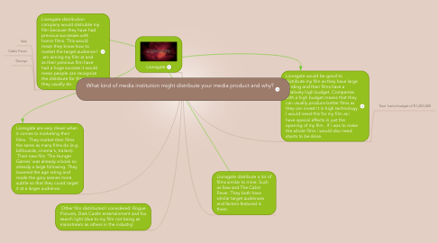 Mind Map: What kind of media institution might distribute your media product and why?