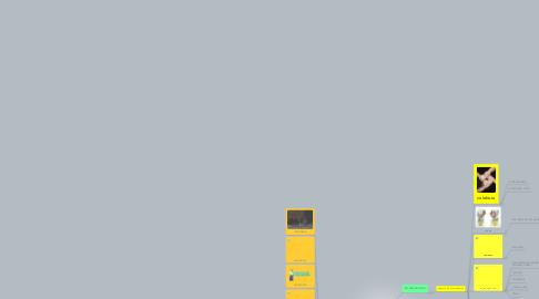 Mind Map: conexionismo