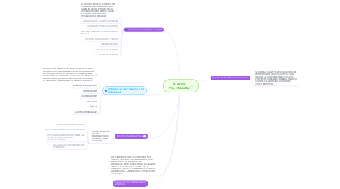 Mind Map: ETAPAS FACTIBILIDAD