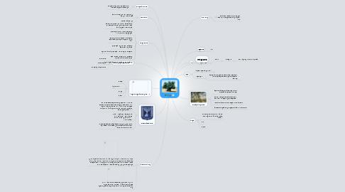 Mind Map: עץ זית