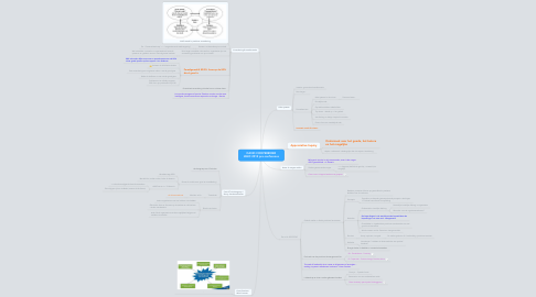 Mind Map: DAVID COOPERRIDER WAIC 2012 pre-conference