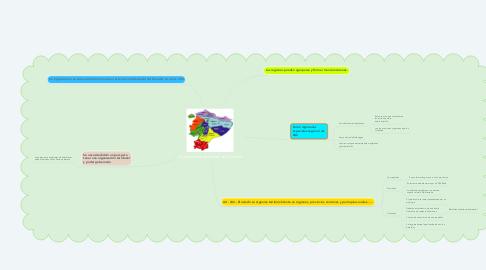 Mind Map: Organización territorial del Ecuador
