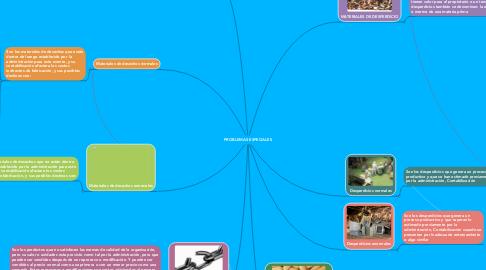 Mind Map: PROBLEMAS ESPECIALES