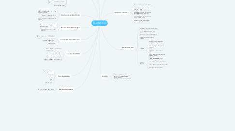 Mind Map: LA ESCULTURA