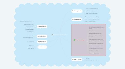 Mind Map: Processo de trabalho