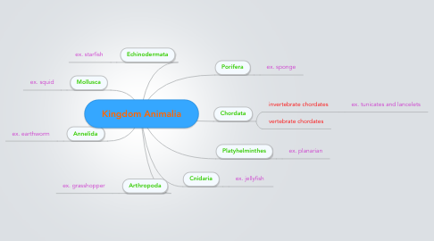 Mind Map: Kingdom Animalia