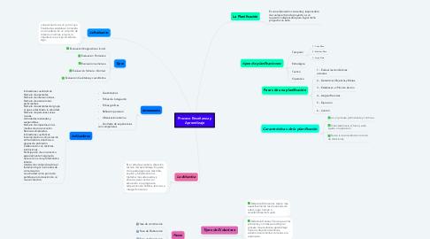 Mind Map: Proceso Enseñanza y Aprendizaje