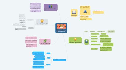 Mind Map: PRINCIPIOS DE LA SOCIOLOGÍA