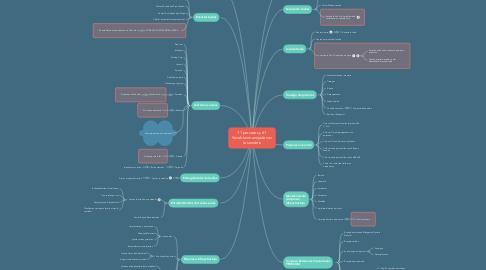 Mind Map: 11 procesos y 61 Variables manejadas en Lavandería