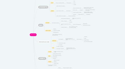 Mind Map: Guía mental