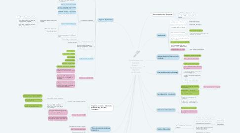 Mind Map: Condiciones de Calidad Etapa 2 - Solicitud de registro certificado