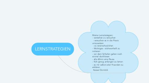 Mind Map: LERNSTRATEGIEN
