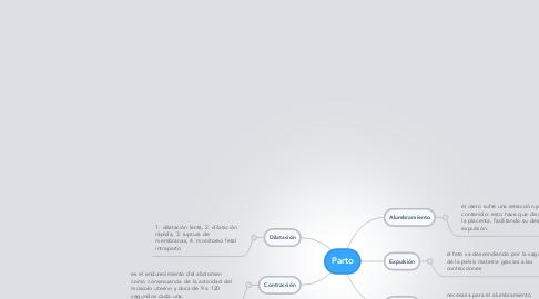Mind Map: Parto