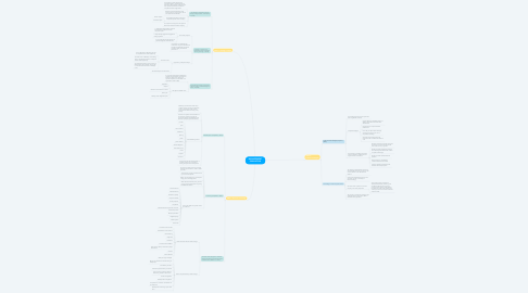 Mind Map: MANAGEMENT SIMULATION