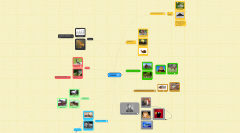 Mind Map: TAUTOLOGIA DARWINISTA