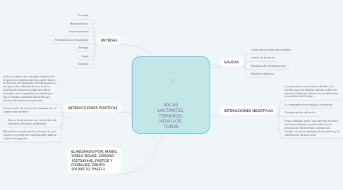Mind Map: VACAS LACTANTES, TERNEROS, NOVILLOS, TOROS